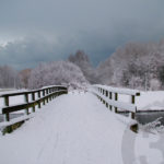 natuurfotografie winter