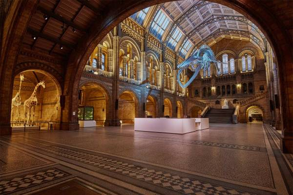 Natural History Museum Project Series - Burohappold