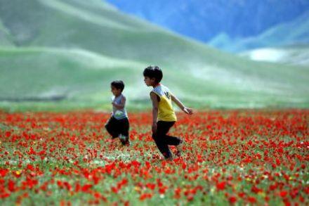 Jawzjan Province, Afghanistan