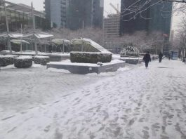 Vancouver Declares State Of Emergency As Thousands Of Snowflakes Batter City
