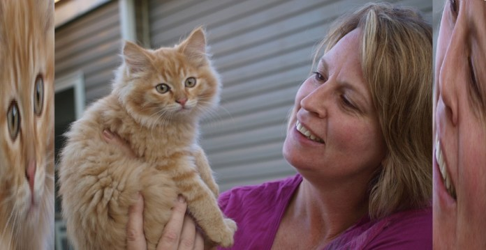 Lady Who Raised 10 Vegan Cats Claims The One That Lived Is Doing Great