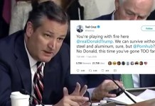 Ted Cruz Slams Trump's Trade Tariffs After Discovering Pornhub Is Canadian