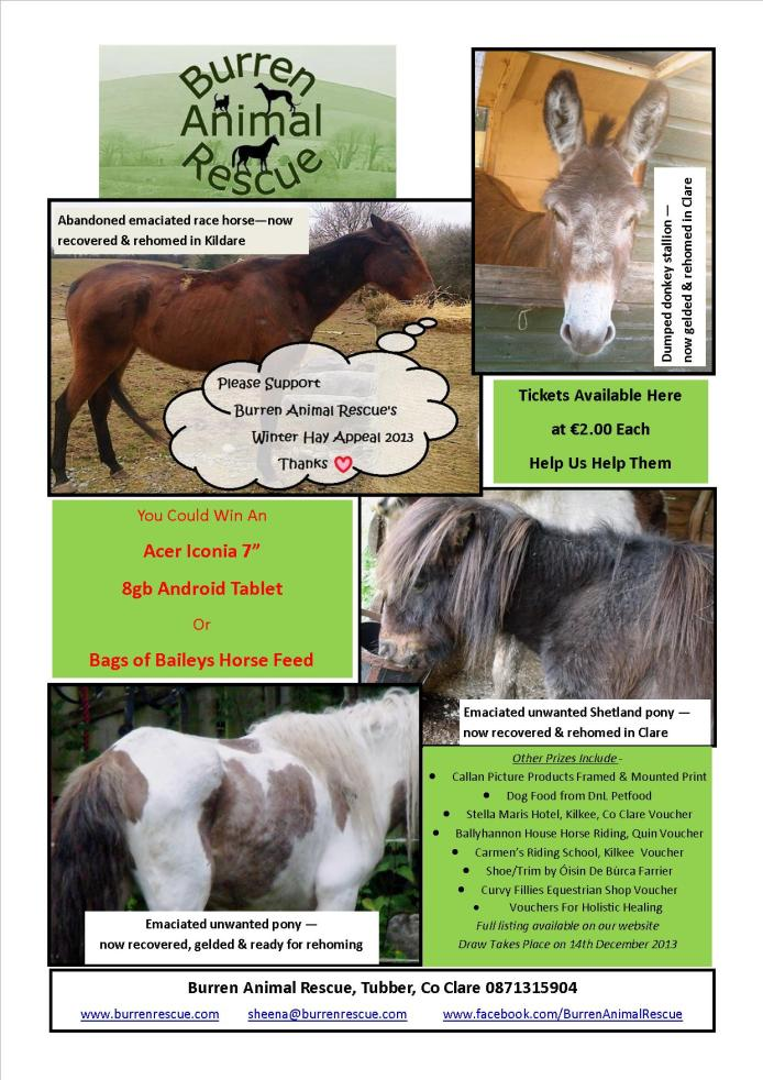 Winter Hay Appeal Draw 2013 Poster