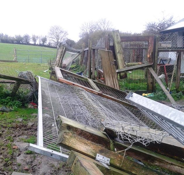 Winter 2015 Storm Damage