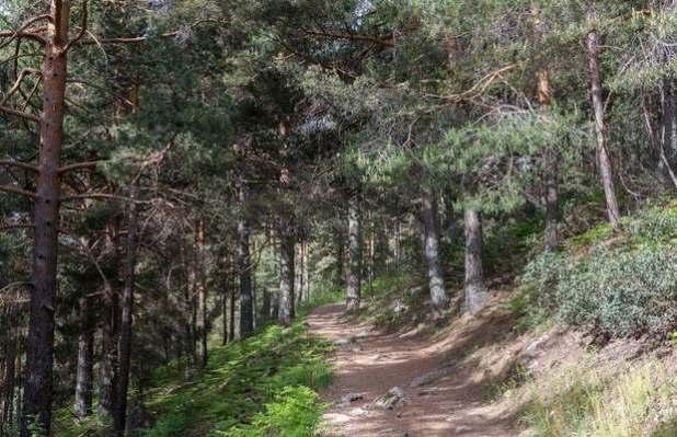 Camino de la Barranca