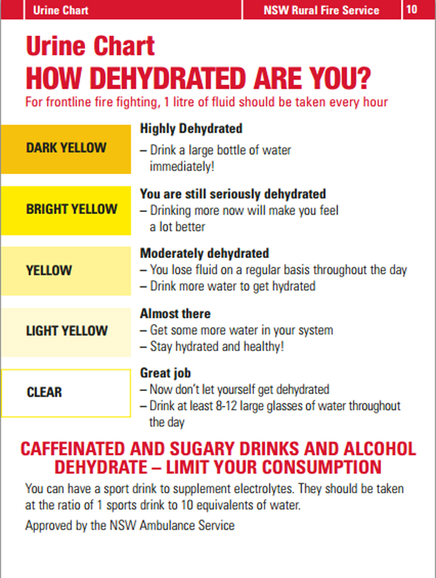 Urine Color & Dehydration