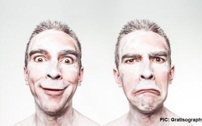 Is your digital twin an ass?
