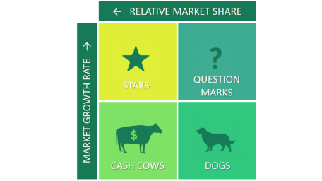 BCG Growth Share Matrix