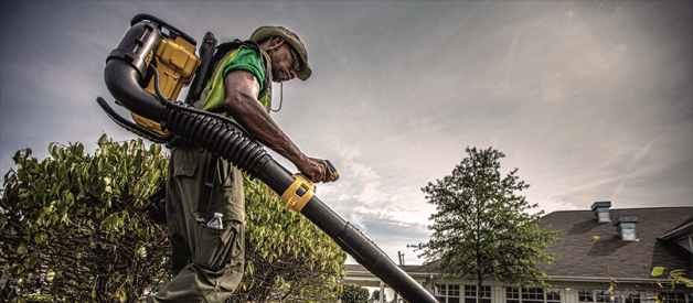 Cordless Backpack Blower