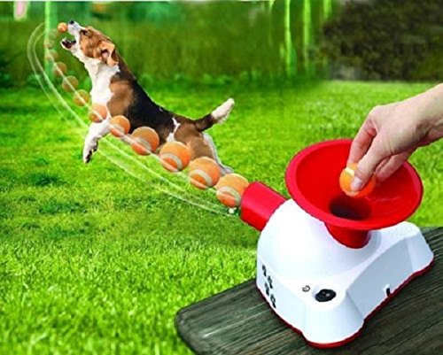 Alek...Shop Ball Launcher Dog Tennis Pet Toy Automatic Fetch Training Thrower Throw Up Hyper Too Dogs Gotcha Talking - Automatic Fetch Machines