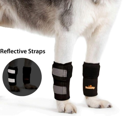NeoAlly Pair Dog & Cat Front Leg Braces Carpal Support Safety Reflective Straps Front Hock Joint