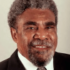 PNGSDP Chairman, Sir Mekere Morauta