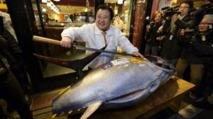 The K95,000 tuna.Credit: Bloomberg