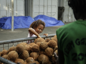 The next generation of coconut farmers on East New Britain. Credit: Jody Cleaver.