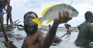ABAC identifies Papua New Guinea's fisheries as outstanding growth area