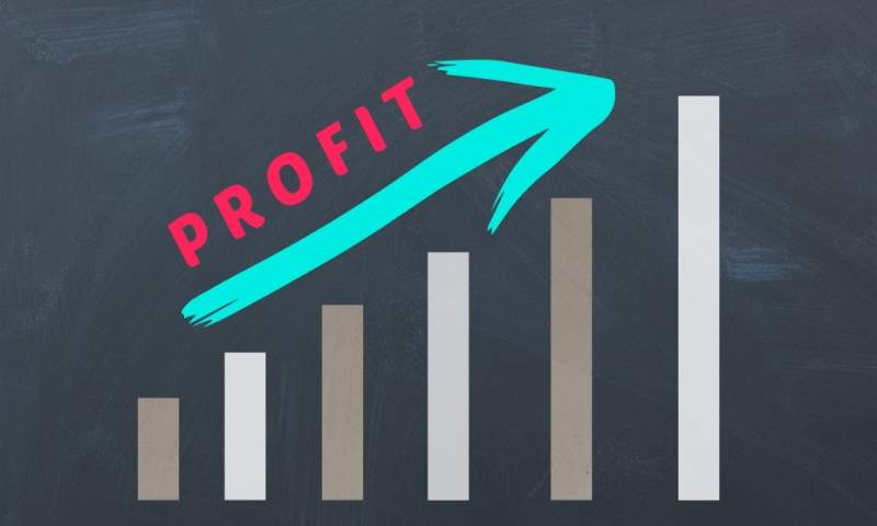 11 Most Profitable Businesses in India with low Investment