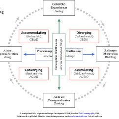 Diagram Of Learning Cycle The Nose And Its Functions Kolb S Styles Experiential Theory Businessballs Com