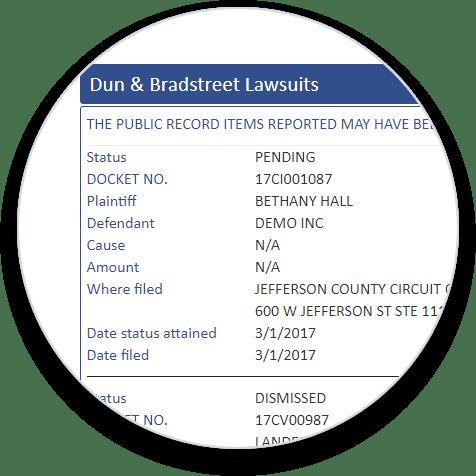 D&B Lawsuits Add-On bubble image