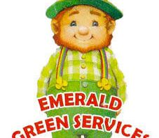 Emerald Green Services – Hastings Tree Pruning Experts