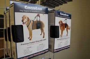 GingerLead has sold 40,000 units and received three patents on the invention. (Amy DiPierro)
