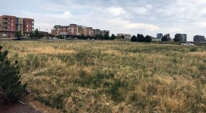 Westfield sells 2.5-acre chunk of DTC property