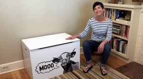 Sunnyside furniture maker launches custom-printed toy box