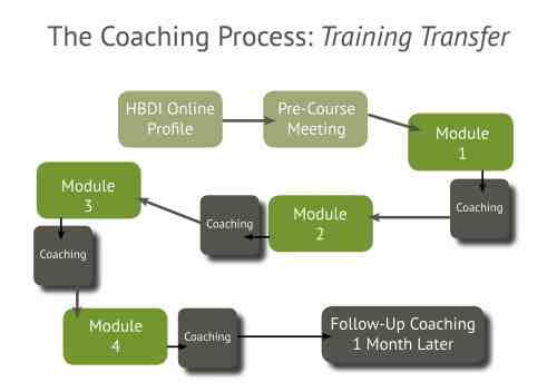 small resolution of the coaching process training transfer