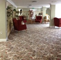 Carpets By Dennis | Two Birds Home