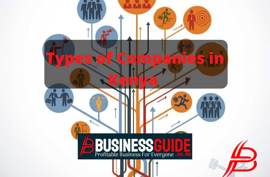 Types of Companies in Kenya