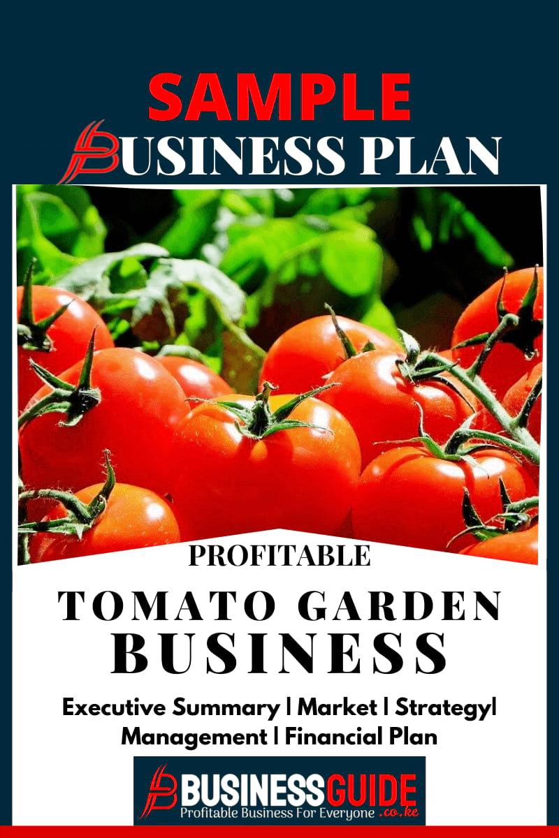 tomato farming business plan sample pdf