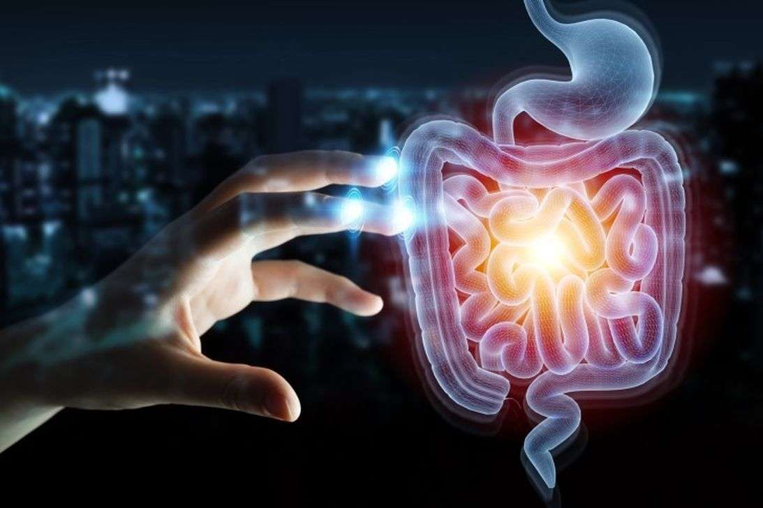 New Research: For the first time in the world, scientists have found 33 thousand different viruses in our intestine.