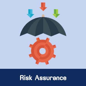 Risk Assurance