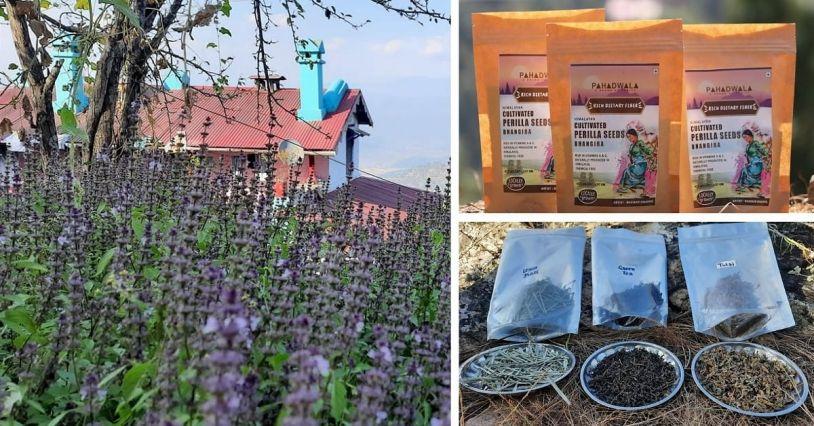 Uttarakhand Farmer Success Story