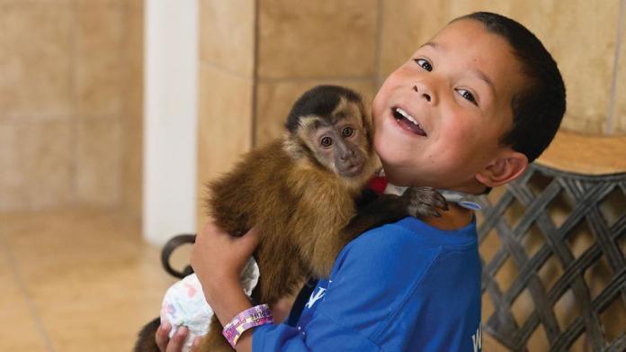 boy with monkey