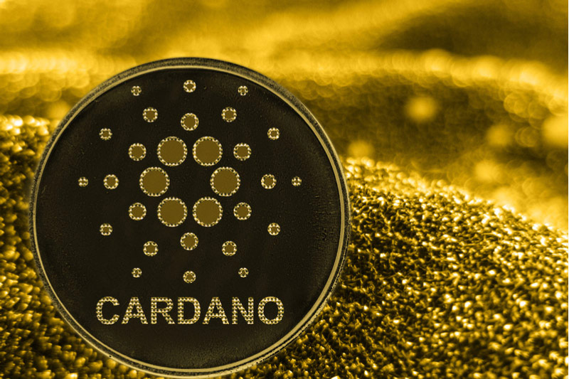 Cardano Falls 10.01% In Rout