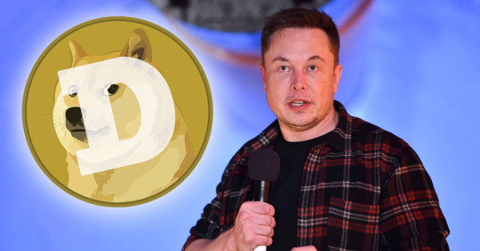 Joke cryptocurrency Dogecoin is booming after Elon Musk said it 'rulez'