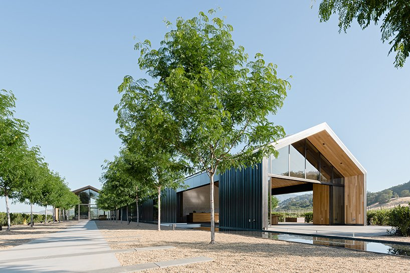USA's most eco-conscious winery captures the vineyards landscape