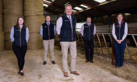 New managing director for growing rural property and development consultancy