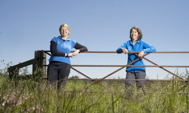 Northumberland National Park wants panel members to support Government farming project