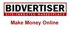 bidvertiser-Adsense Alternative Networks