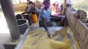 cassava farming garri production