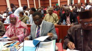 adewole-health-budget