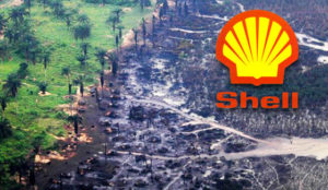 delta oil diversity case Nigerian oil pollution claims against shell cannot be heard in uk the landmark oil case is a warning shot to multinationals fisherman across the niger delta will continue to count the cost of shell's oil spills, writes amnesty international's kate allen published: 9 jan 2015.