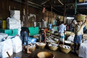 ASEAN Fish Production to Hit 24% Global Output 2030