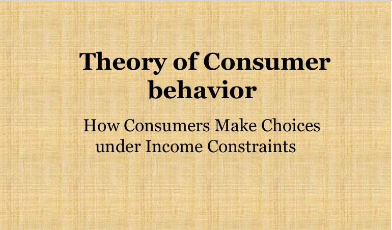 Theory of Consumer Behavior  Definition and Approaches
