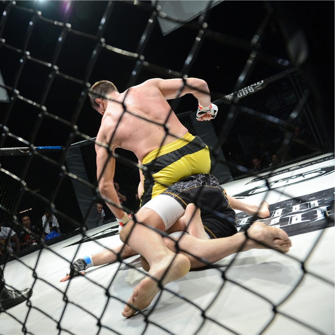 The Daily: UFC 232 to Have Official Crypto Partner, 5% of Israelis Use Bitcoin