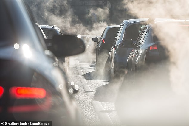 Air pollution contains toxic chemicals which are increasingly damaging people's health – this way of producing a sustainable car fuel could cut out the need for fossil fuels, the scientists said (stock image)