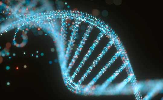 DNA (deoxyribonucleic acid) structure, illustration.