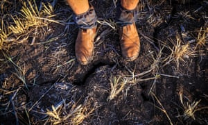 Crop failure in New South Wales this October.