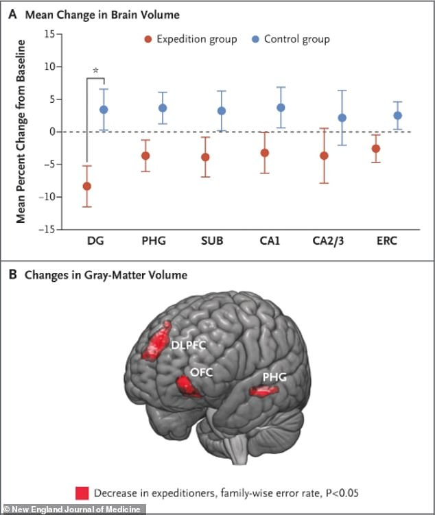 The researchers' data showed that brain volume in the expedition group decreased by between around 2.5 and 10 per cent, compared with the control group who stayed at home and actually saw increases in their brain size (top graph)